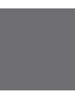 logo-mini-top-gris